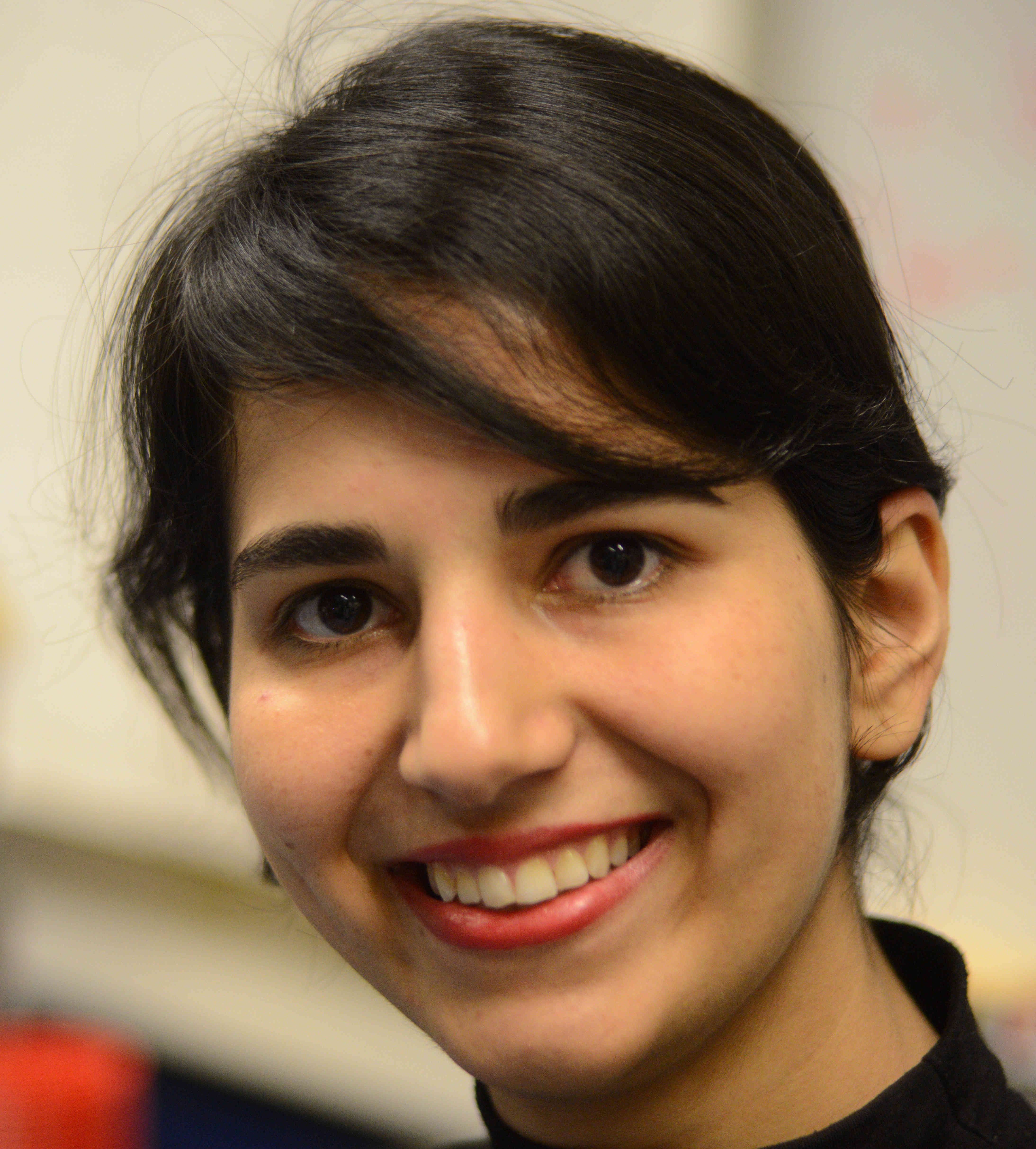 parisa haghani thesis Vice director & stream leader & unit leader usm at national university galway, ireland.